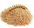 Salvados de Cereales