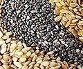 Semillas Ecológicas Alimenticias