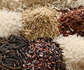 Arroces y Cereales Ecológicos
