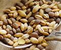 Granos de Cereales Integrales